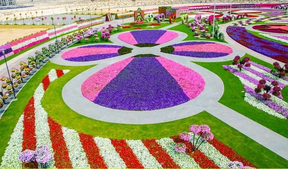 """45 مليون زهرة تجعل """"دبي ميراكل جاردن"""" أكبر حديقة زهور في العالم"""
