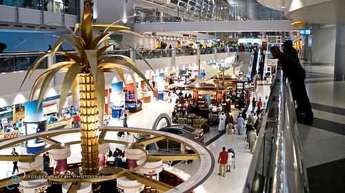 نخلة الذهب واجهة مطار دبي الدولي