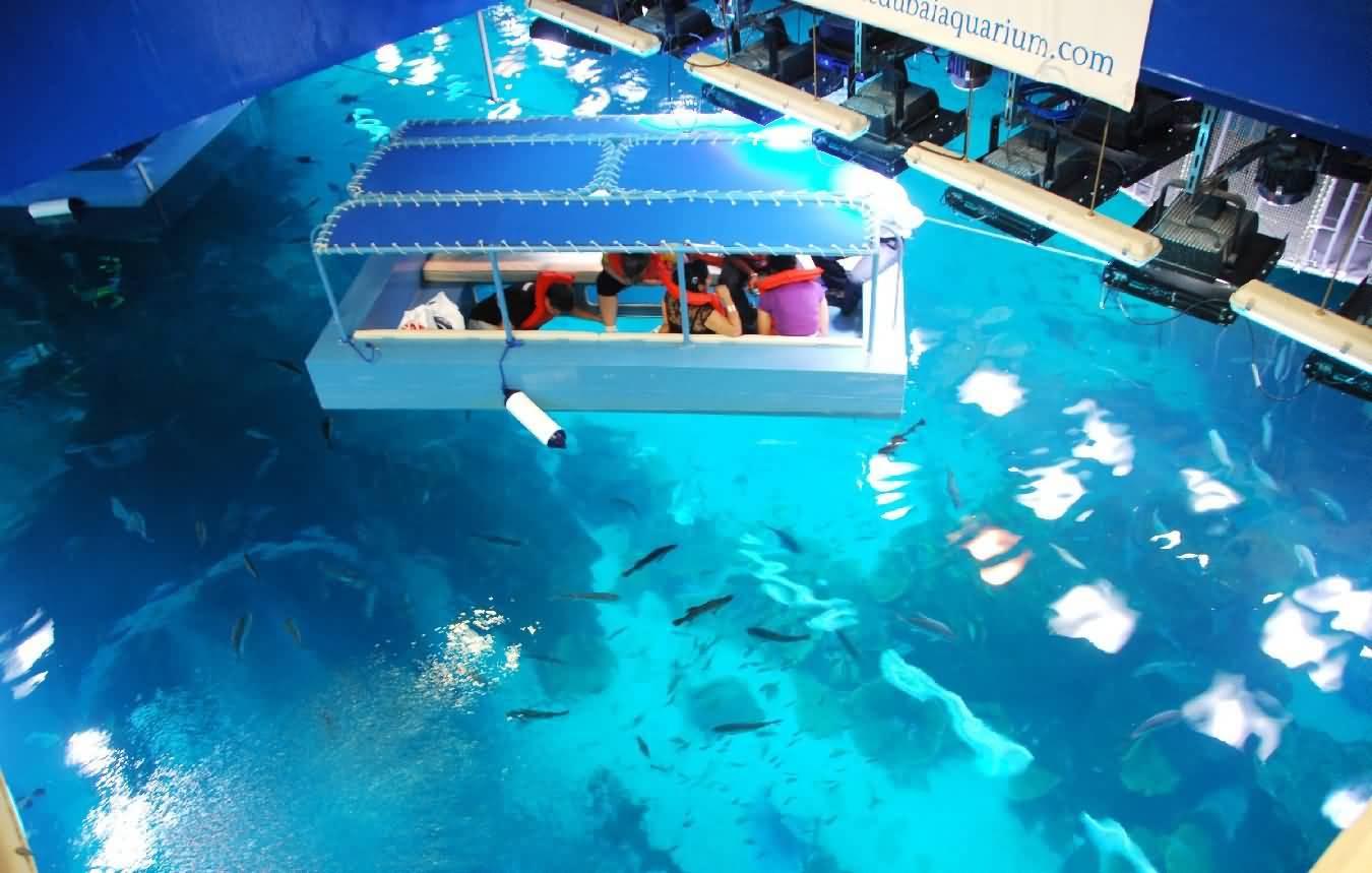 Visitors enjoy Glass Bottom Boat rides at Dubai Aquarium Underwater Zoo