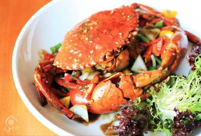 مطعم سي فود ماركت للمأكولات البحرية – القرهود