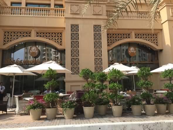 Photo of مركز غولدن مايل غاليريا للتسوق – نخلة جميرا