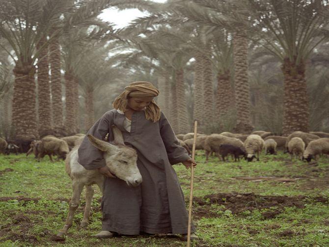 Photo of معرض مصر للمصور الفرنسي دينيس داليوكس