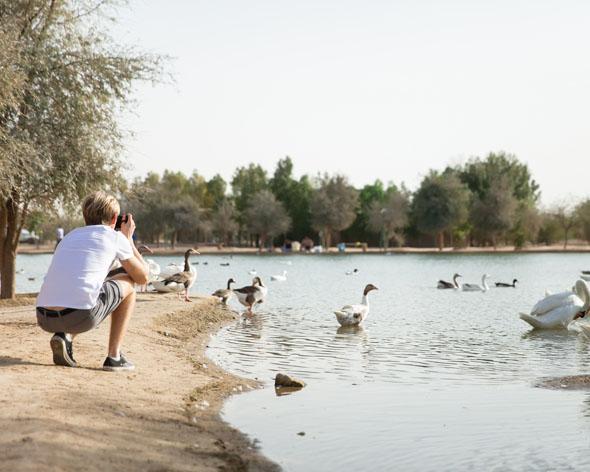 بحيرة القدرة .. الوجهة الأولى لمحبي الطبيعة الساحرة في دبي