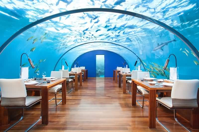 Photo of عروض فندق كونراد المالديف جزيرة رانغالي لموسم العطلات والأعياد