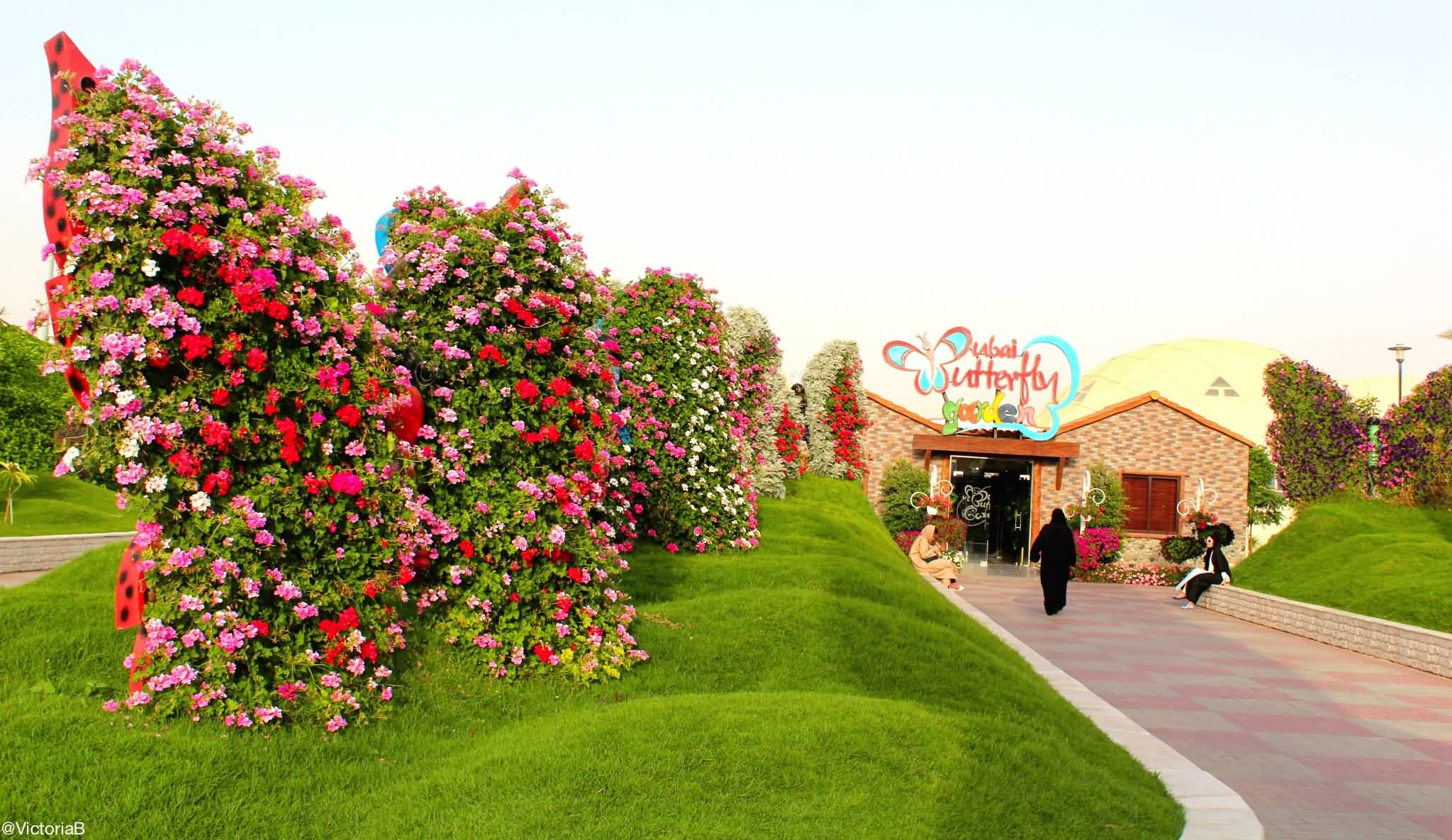 صورة بالفيديو .. أفضل 10 حدائق للزيارة في دبي