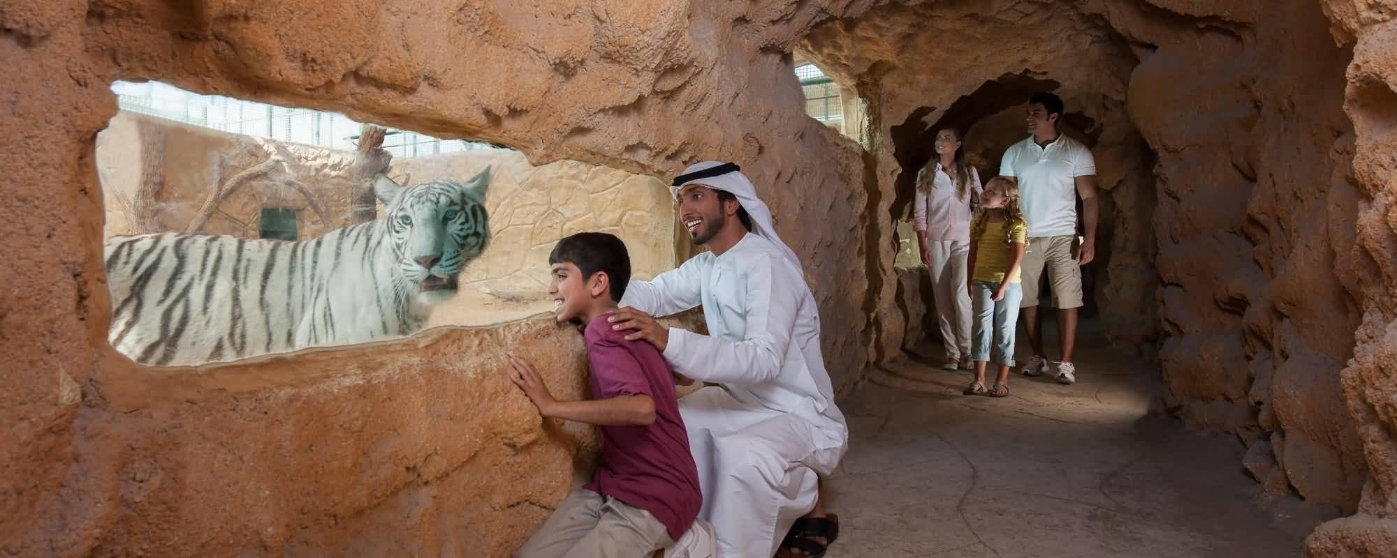 Photo of منتجع وحديقة الإمارات للحيوانات في رمضان