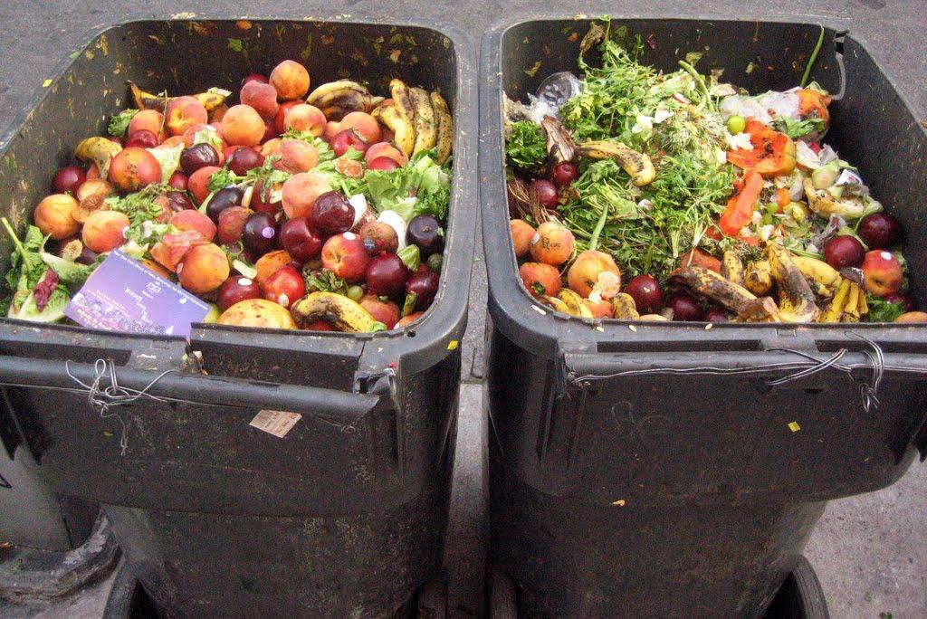 حقائق و ارقام حول فضلات الطعام في الإمارات