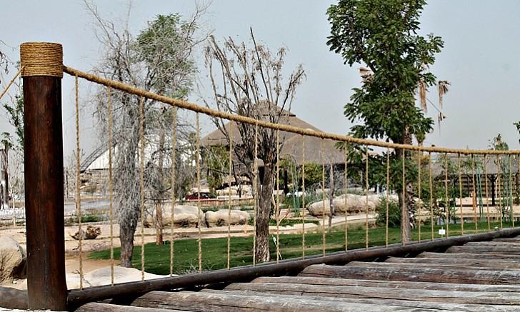 صورة إكتشفوا بالفيديو حديقة سفاري دبي الجديدة