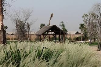 بالصور .. جولة داخل حديقة سفاري دبي
