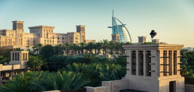 بالفيديو … عرض الباركور كيي ويليز في دبي