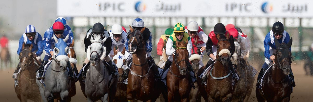 Photo of سباقات الخيول تعود إلى ميدان مجددا