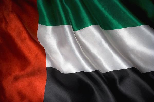 إنفوجرافيك | كل ما يجب عليكم معرفته حول علم الإمارات
