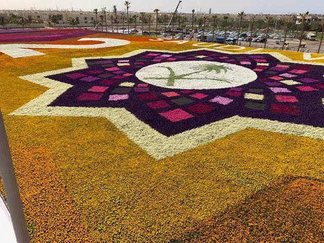 السعودية تدخل موسوعة غينيس عن أكبر سجادة من الزهور