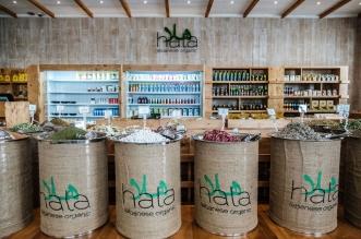 مطعم هلا أحدث مطعم للمأكولات العضوية في دبي