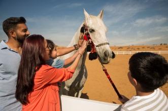 عروض عيد الأضحى لفنادق ومنتجعات إمارة رأس الخيمة