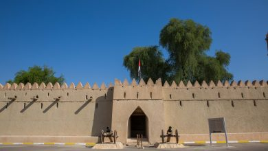 Photo of أهم الأنشطة الثقافية التي ستقام في مدينة العين لموسم 2017/2018