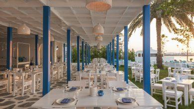 Photo of مطعم فيش الشاطئي في دبي يفتتح أبوابه مجدداً