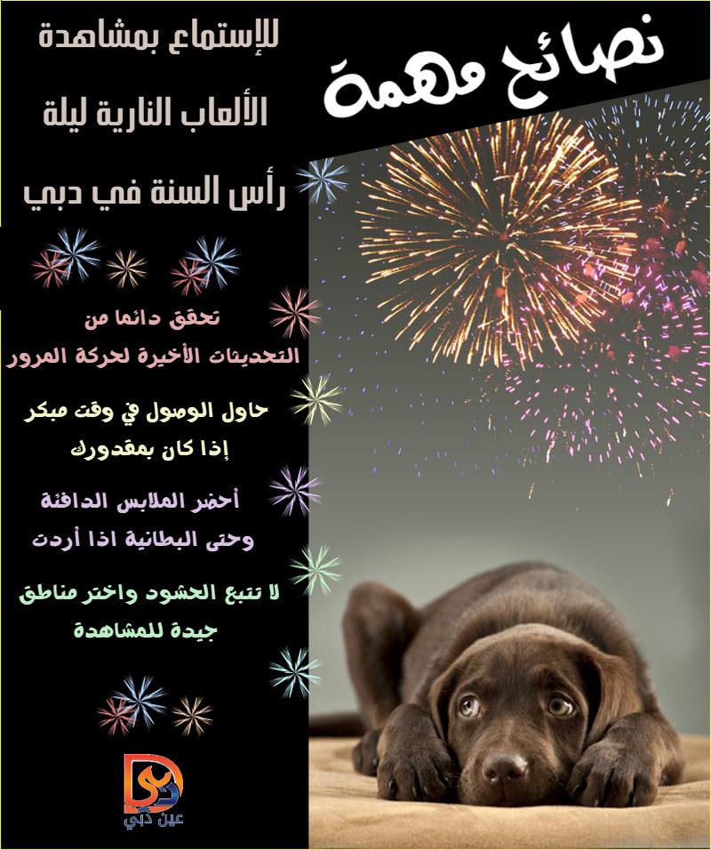 FireworksSafety