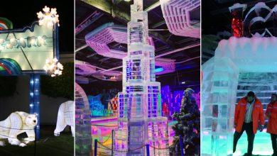 Photo of بالفيديو جولة داخل حديقة الجليد في حديقة دبي المتوهجة