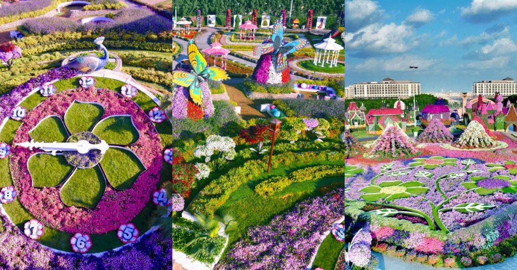 حديقة الزهور ميركال جاردن