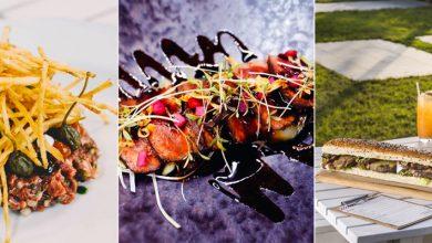 مطاعم لتناول وجبة غذاء في دبي