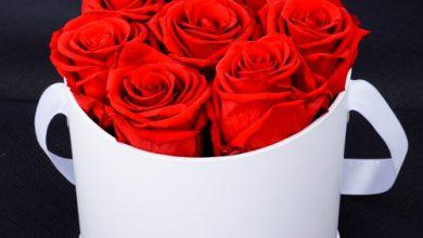Photo of إختر هديتك في يوم الحب مع 800 فلاور