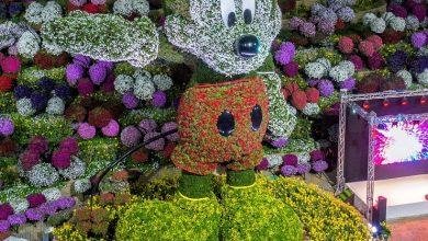 Photo of دبي ميراكل جاردن تدشن مجسم ميكي هاوس من الزهور وتحقق رقماً قياسياً جديداً