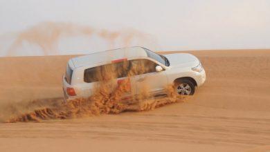 صورة ألفا لإدارة الوجهات تنظم رحلات سفاري لا تضاهي في الإمارات