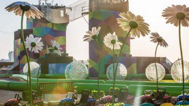 صورة فعاليات مهرجان أم الإمارات
