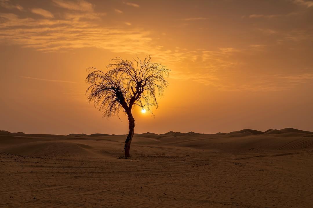 غروب الشمس في دبي