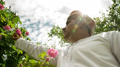 Photo of موسم الورود في منتجع أنانتارا الجبل الأخضر