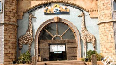صورة برنامج تثقيفي للأطفال من حديقة الإمارات للحيوانات