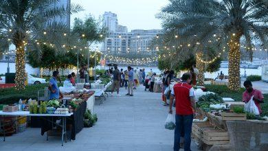 Photo of سوق المنتجات العضوية في دبي فستيفال سيتي