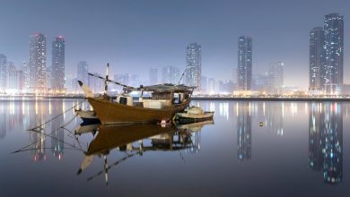 Photo of أجمل الصور التي التقطتها عدسات المصورين في دبي