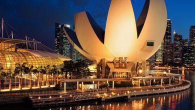 صورة تجارب سياحية متنوعة في سنغافورة