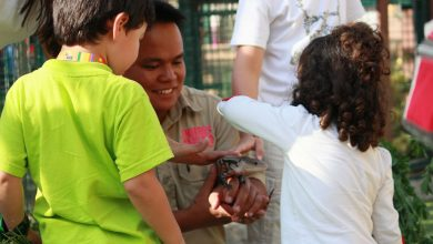 Photo of مخيم الأطفال الصيفي من منتجع وحديقة الإمارات للحيوانات