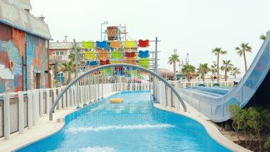 Photo of درس السباحة العالمي في منتزه لاجونا المائي