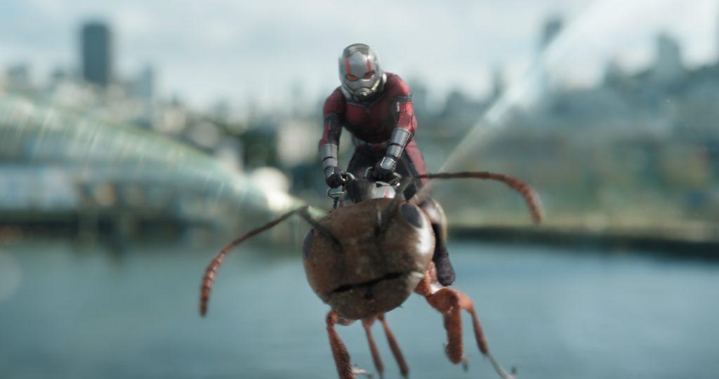 موعد عرض فيلم ANT MAN AND THE WASP