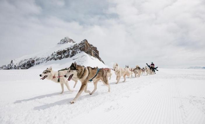 تجارب غلاسيير 3000 في أعلى قمم جبال الألب