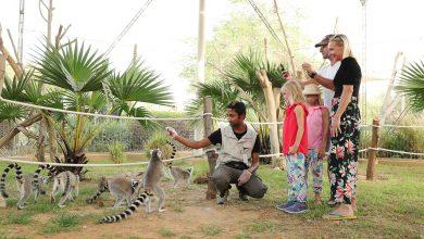 Photo of برامج عيد الأضحى الترفيهية من حديقة الحيوانات بالعين