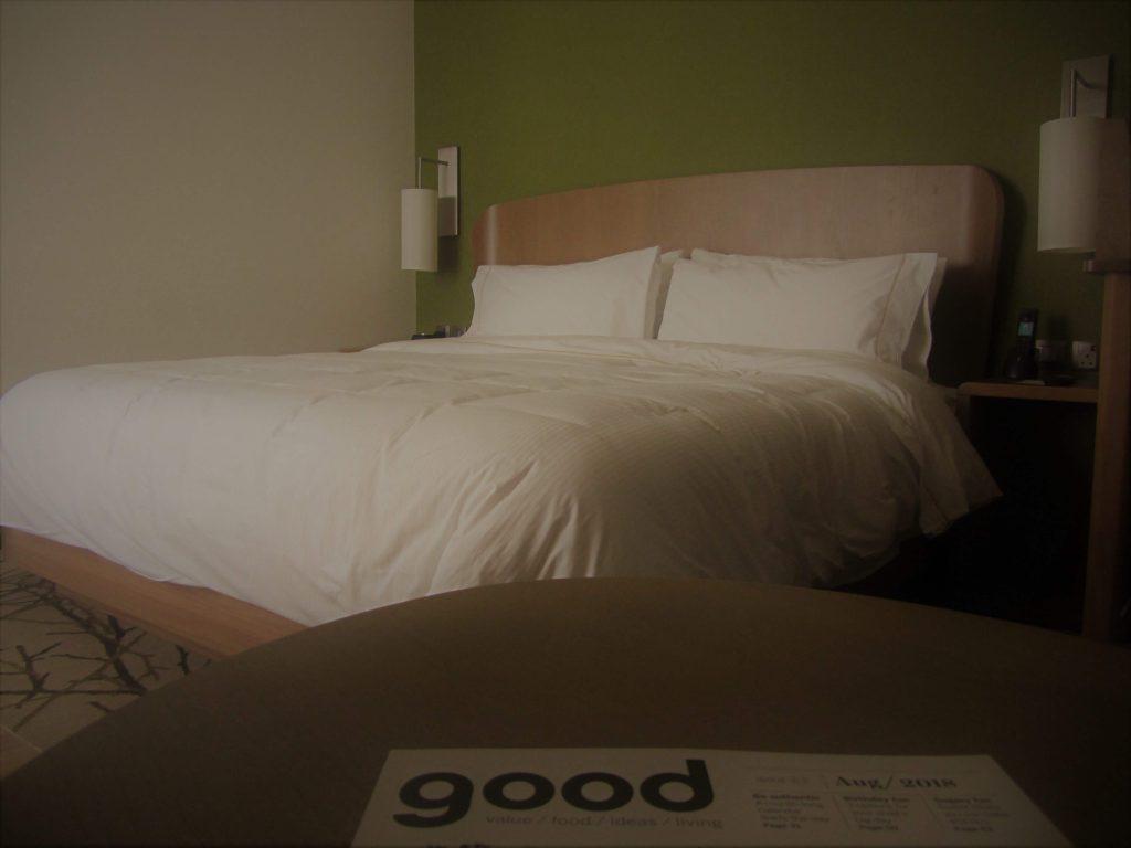 فندق إليمنت معيصم