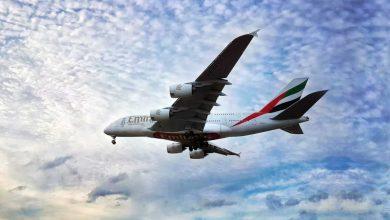 Photo of متى يمكنك حجز رحلات الطيران للاحتفال بالكريسماس؟