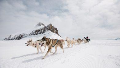 صورة التزلج صيفاً في غلاسيير 3000 السويسرية