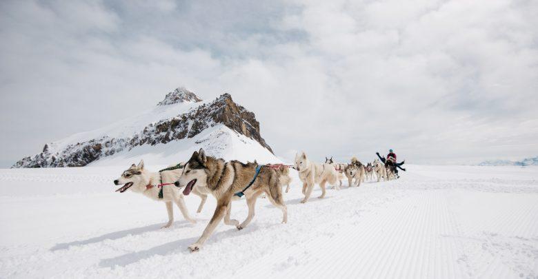 التزلج صيفاً في غلاسيير 3000 السويسرية
