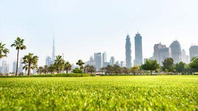 Photo of أين تذهب للتنزه خلال فصل الشتاء في دبي ؟