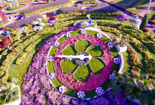 حديقة دبي ميراكل