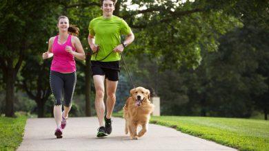 Photo of نصائح حول الصحة واللياقة البدنية أثناء السفر