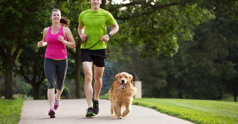 نصائح حول الصحة واللياقة البدنية أثناء السفر