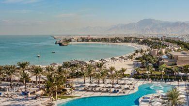 Photo of عروض فندق ومنتجع جولف وشاطئ هيلتون الحمراء إحتفالاً بموسم الأعياد 2019