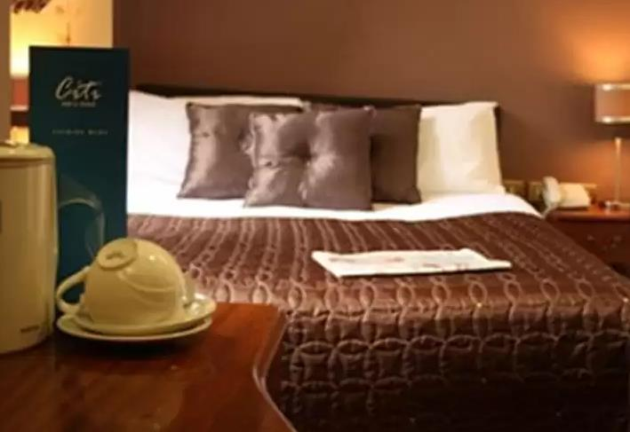 فندق دبلن سيتي